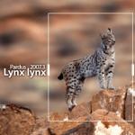 Pardus'un Son Sürümü Lynx Lynx
