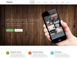 wordpress responsive free theme